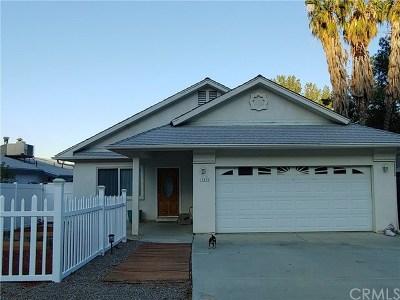 Lake Elsinore Single Family Home For Sale: 15474 Washington Avenue