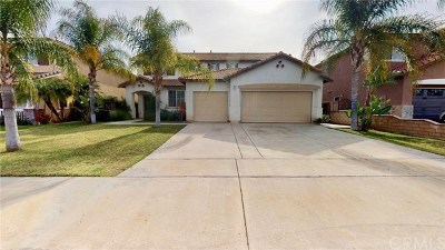 Riverside, Temecula Single Family Home For Sale: 33310 Elizabeth Road