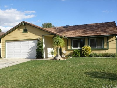 Lake Elsinore Single Family Home For Sale: 950 Lake Meadow Court