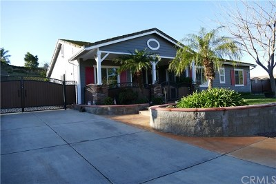 Norco Single Family Home For Sale: 532 Branding Iron Way