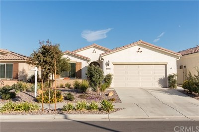 Hemet Single Family Home For Sale: 1362 Via Rivas