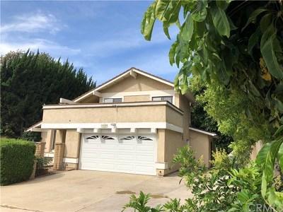 San Juan Capistrano Single Family Home For Sale: 33801 Via Cascada
