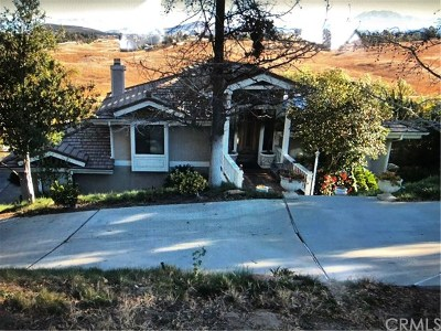 Temecula Single Family Home For Auction: 30050 Del Rey Road