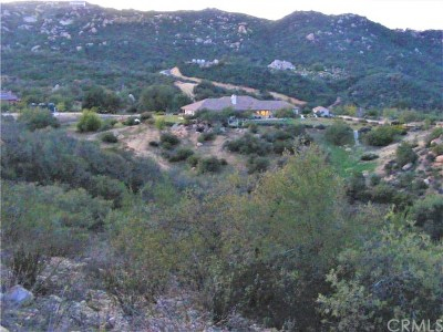 Murrieta Residential Lots & Land For Sale: 1 Calle Huerto