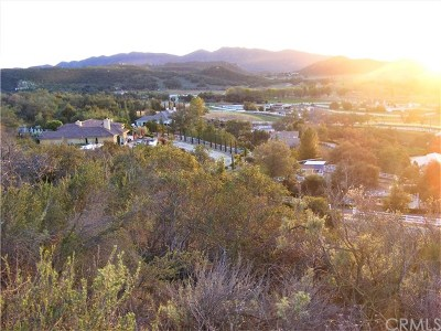 Murrieta Residential Lots & Land For Sale: Calle Collado