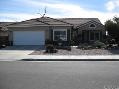 Winchester Single Family Home For Sale: 31277 Ermitage Lane