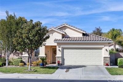 Menifee Single Family Home For Sale: 28168 Meadowsweet Drive