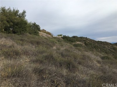 Murrieta Residential Lots & Land For Sale: Calle Del Sol