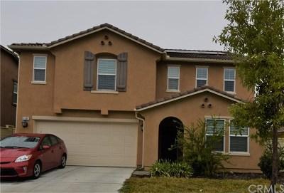 Lake Elsinore Single Family Home For Sale: 4190 Ladrillo Street