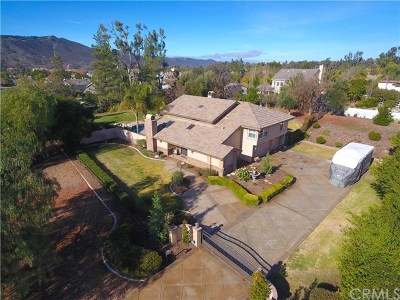Temecula Single Family Home For Sale: 29930 Santiago Road