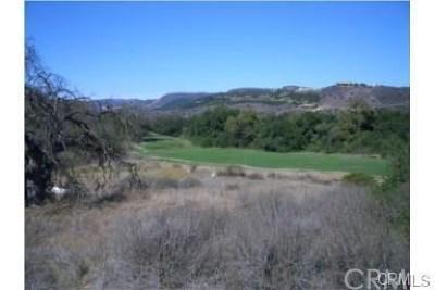 Temecula Residential Lots & Land For Sale: 43900 La Cruz Drive