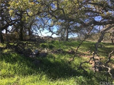 Murrieta Residential Lots & Land For Sale: 19800 Avocado Mesa