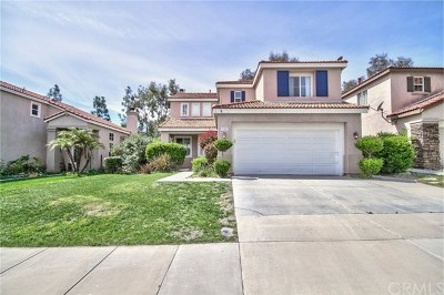 Temecula Single Family Home For Sale: 32487 Galatina Street