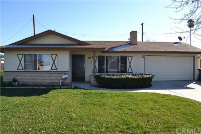 Hemet Single Family Home For Sale: 1248 Gilbert Street