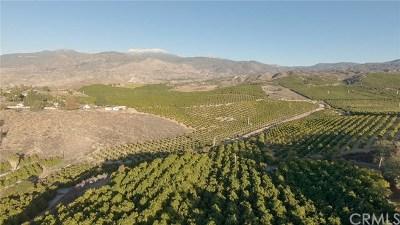 Hemet Residential Lots & Land For Sale: Via Sendero