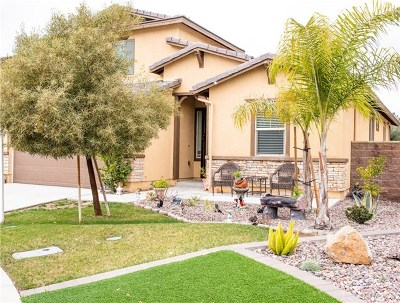Lake Elsinore Single Family Home For Sale: 29387 Tournament