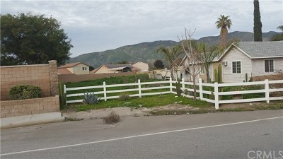 Hemet, San Jacinto Single Family Home For Sale: 859 Cottonwood Avenue