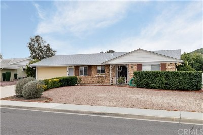 Sun City Single Family Home For Sale: 28217 Portsmouth Drive
