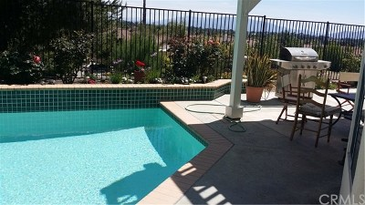 Murrieta Single Family Home For Sale: 40620 Via Diamante