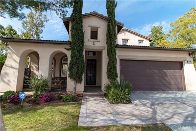Murrieta Single Family Home For Sale: 29764 Masters Drive