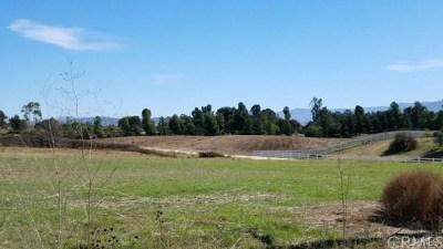 Murrieta Residential Lots & Land For Sale: 1 Van Gaale Ln
