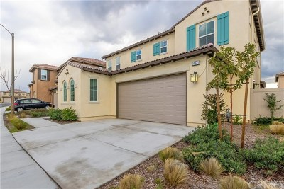 Lake Elsinore Single Family Home For Sale: 39671 Strada Gabrille