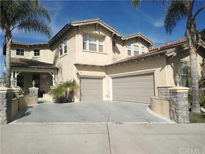 Chula Vista Single Family Home For Sale: 1953 Moss Landing Avenue