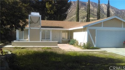 Lake Elsinore Single Family Home For Sale: 15237 Lake Terrace Drive