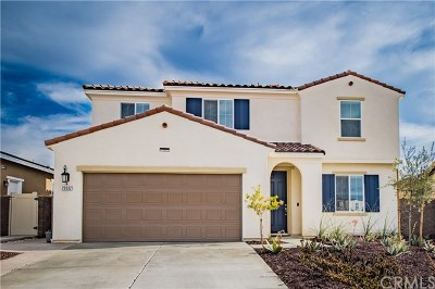 Lake Elsinore Single Family Home For Auction: 29332 Flame Tree
