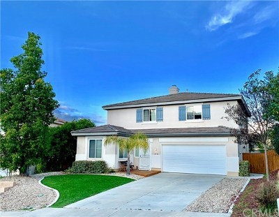 Temecula Single Family Home For Sale: 41358 Pine Tree Circle