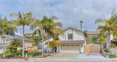 Carlsbad Single Family Home For Sale: 3624 Pontiac Drive