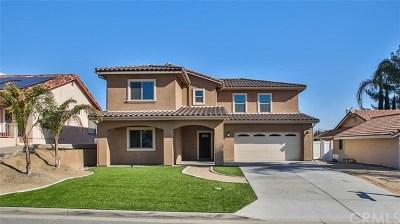Canyon Lake Single Family Home For Sale: 22710 Canyon Lake Drive S