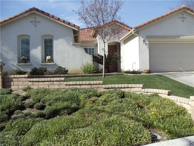 Temecula Single Family Home For Sale: 42096 Vandamere Court