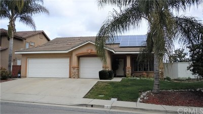 Lake Elsinore Single Family Home For Sale: 1 Del Copparo