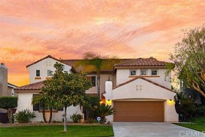 Temecula Single Family Home For Sale: 33026 Rhine Avenue