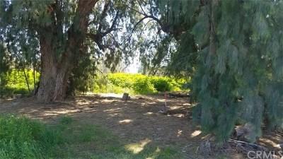 Lake Elsinore Residential Lots & Land For Sale: Morton