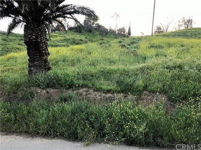 Lake Elsinore Residential Lots & Land For Sale: Palm