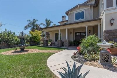 San Juan Capistrano Single Family Home For Sale: 29921 Camino Capistrano