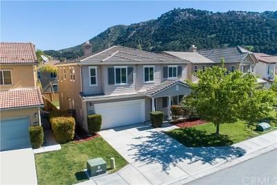 Fallbrook Single Family Home For Sale: 3923 Lake Circle Drive