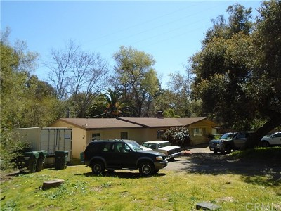Fallbrook Single Family Home For Sale: 714 S Live Oak Rd