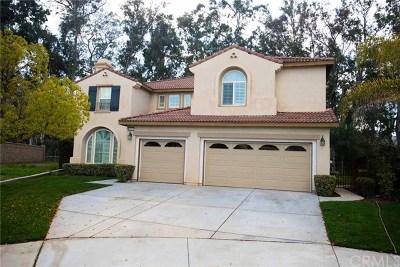 Murrieta CA Single Family Home For Sale: $637,000