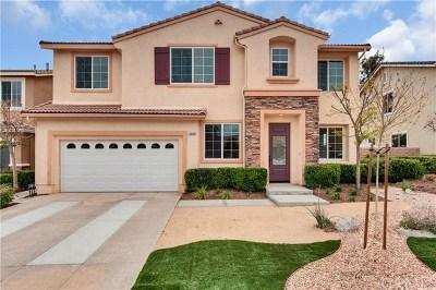 Menifee Single Family Home For Sale: 30290 Blue Cedar Drive