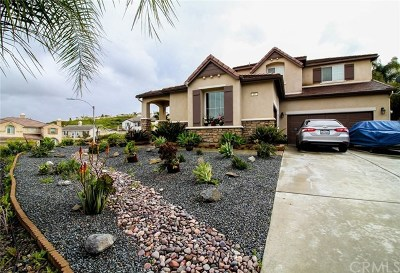 Lake Elsinore Single Family Home For Sale: 26 Via Palmieki Court