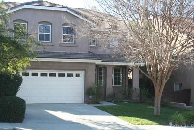Canyon Lake, Lake Elsinore, Menifee, Murrieta, Temecula, Wildomar, Winchester Rental For Rent: 29309 Masters Drive