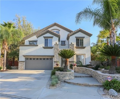 Temecula Single Family Home For Sale: 29523 Georgetown Lane