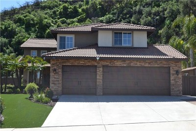 Lake Elsinore Single Family Home For Sale: 29616 Dale Court
