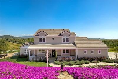 Temecula Single Family Home For Sale: 35125 Via Cerro Vista