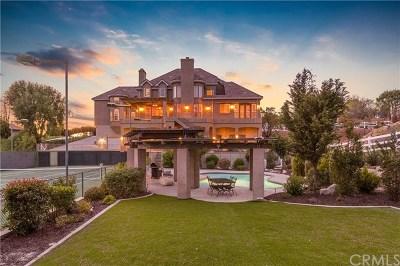 Temecula Single Family Home For Sale: 29961 Via Norte
