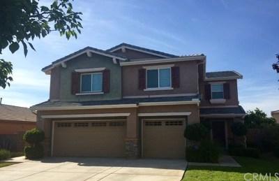 Lake Elsinore Single Family Home For Sale: 45006 Thalia Lane