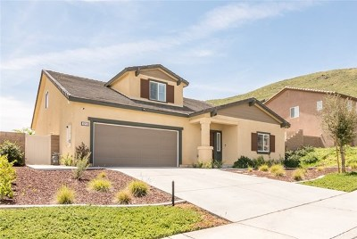 Winchester Single Family Home For Sale: 33133 Cattle Drive